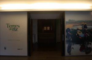 Entrée Exposition Terres de riz - Musée National d'Arts Asiatiques - Guimet (MNAAG)- Paris 2018