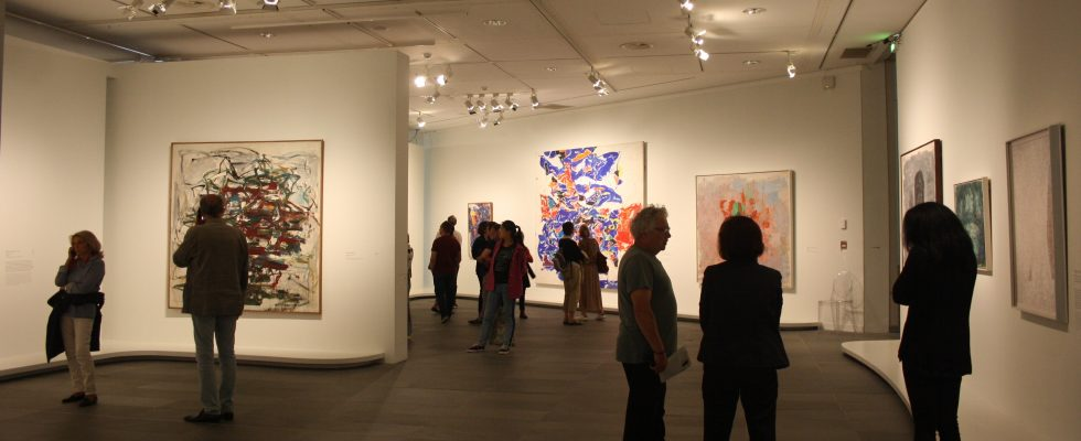 Exposition Nymphéas - L'abstraction américaine et le dernier Monet - Musée de l'Orangerie - Paris 2018