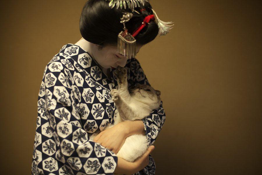 L'image montre une femme habillée en kimono en train de porter un chat comme s'il s'agissait d'un bébé.