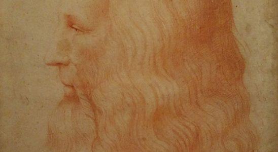 portrait de Vinci
